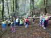 iskanje-zivljenja-v-gozdu