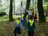 iskanje-zivljenja-v-gozdu3